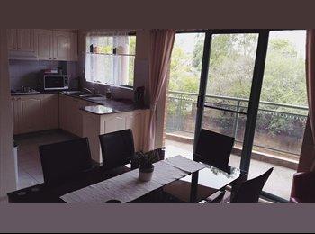 EasyRoommate AU - Beautiful apartment!, Miranda - $250 pw