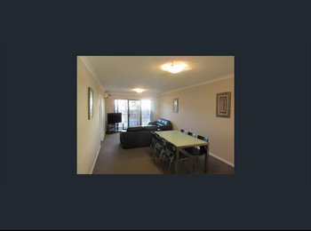 EasyRoommate AU - Double room for rent in friendly apartment  in the heart of Joondalup , Iluka - $175 pw