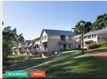 EasyRoommate AU - STUDENT ACCOMMODATION FOR RENT (UWS CAMPBELLTOWN), Campbelltown - $240 pw