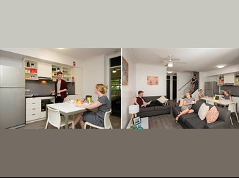 EasyRoommate AU - ROOM FOR RENT IN STUDENT ACCOMODATION, Red Hill - $250 pw