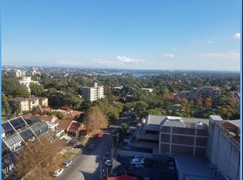EasyRoommate AU - Short term 1 bed, 1 bath in prime location, St Leonards - $390 pw