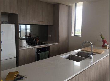 EasyRoommate AU - New house mate wanted , Penshurst - $250 pw