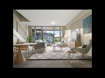 EasyRoommate AU - Stunning Modern Apartment in Heart of Dee Why, Balgo - $350 pw