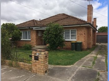 EasyRoommate AU - Large Room in Great Location - Young Professional, Geelong - $130 pw