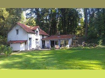 Appartager BE - Colocation ds une villa à Limal pour 250€, Rixensart - 250 € pm