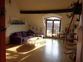Appartager BE - chambre meublée , Saint Gilles Sint Gillis - 460 € pm