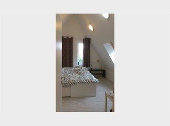 Appartager BE - Chambre/studio avec SDB privée étudiant, stagiaire,jeune diplômé       , Tournai - 365 € pm