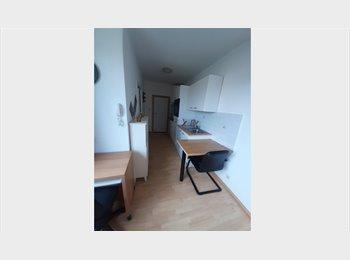 Appartager BE - Juillet-Août : Studio disponible pour étudiant, salarié, touriste, Charleroi - 350 € pm