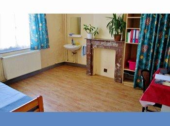 Appartager BE - Belle chambre meublée en colocation avec jardin dans quartier calme du centre de Tournai, Tournai - 240 € pm
