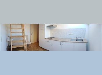 Appartager BE - Colocation - étudiant(e):, Saint Gilles Sint Gillis - 450 € pm
