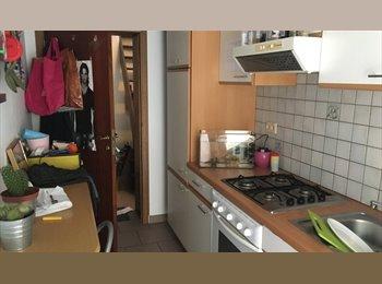 Appartager BE - Kot pour étudiant, Namur - 295 € pm