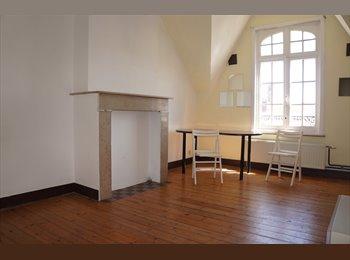 Appartager BE - Très belle chambre, Forest-Vorst - 430 € pm