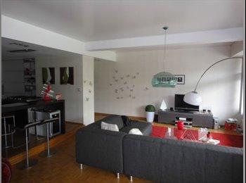 Appartager BE - Suberbe appart meublé cherches nouveaux locataires !, Liège - 400 € pm