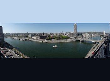 Appartager BE - Location meublée 10e étage vue sur Meuse du 01/07/17 au 30/06/18, 2 chambres + parking couvert en pl, Liège - 750 € pm