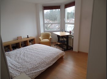 Appartager BE - 3 chambres à louer dans maison rénovée à Boitsfort, Watermael Boitsfort - Watermaal Bosvoorde - 1.500 € pm