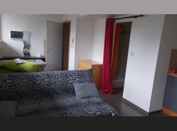 Appartager BE - studio neuf pour 1 étudiant/e non domicilié/e à louer à Mons, Mons - 440 € pm