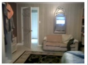 EasyRoommate CA - Student House DIRECT Bus Stepsfrom houseUniv of Alberta Bu, Edmonton - $480 pcm
