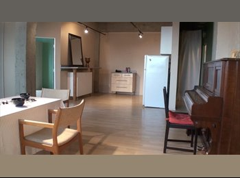 EasyRoommate CA - 1 - 15' x 15' bedroom available in this loft X street from Mac University, Edmonton - $750 pcm