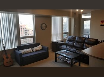 EasyRoommate CA - Room for rent in 2 BHK apartment in Downtown Toronto, Toronto - $1,200 pcm