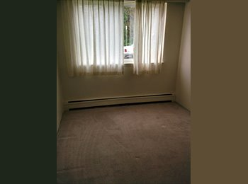 EasyRoommate CA - $485 Shared student apartment, Burnaby - $485 pcm