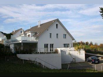 EasyWG CH - WG in EGG in neuerem Haus in der Natur sucht neue Mitbewohnerin oder einen neuen Mitbewohner., Zürich - 850 CHF / Mois