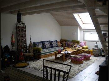 EasyWG CH - Chambre dispo dans un bel appartement en plein centre de Genève!, Genève - 1300 CHF / Mois