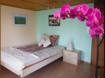 EasyWG CH - Meilen: Furnished rooms in 300 year Lake Zurich house, Zürich - 665 CHF / Mois