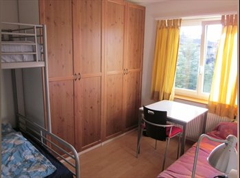 EasyWG CH - Studio for rent in downtown 8953 Dietikon, Baden - 800 CHF / Mois