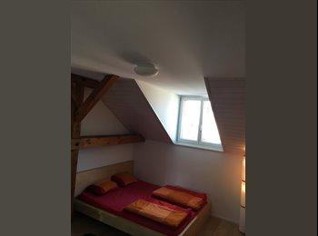 EasyWG CH - Schöne Wohnung in Kreis 3 - Zürich, Zürich - 1600 CHF / Mois