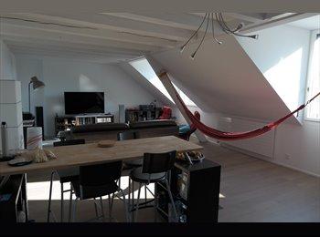 EasyWG CH - Cherche colocataire pour appartement en centre ville, Neuchâtel - 950 CHF / Mois