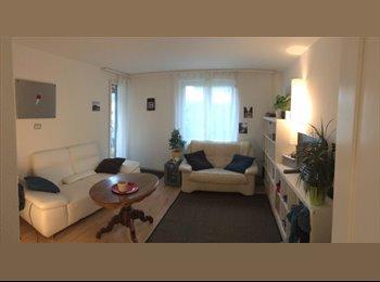 EasyWG CH - Vermiete ein Zimmer, Baden - 650 CHF / Mois