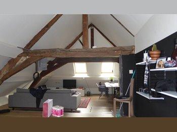 EasyKot EK - Mooie ruime kamers in centrum Mechelen, Mechelen-Malines - € 350 p.m.