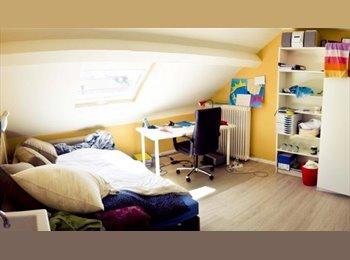 EasyKot EK - Koten en studio's te huur aan de schaalstraat 17, Mechelen-Malines - € 300 p.m.