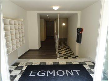 EasyKot EK - Nieuwe studentenstudio's in Mechelen, Mechelen-Malines - € 375 p.m.