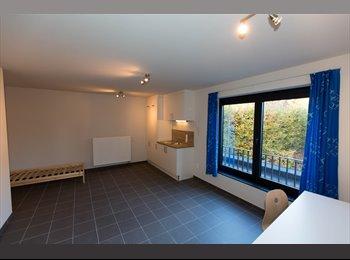 EasyKot EK - Splinter nieuw studentenhuis met ruime kamers in het centrum van Geel, Geel - € 280 p.m.