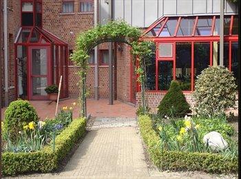 EasyKot EK - Studeren in de stilte van een klooster, Brugge-Bruges - € 330 p.m.
