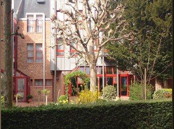 EasyKot EK - Studeren in de stilte van een klooster, Brugge-Bruges - € 325 p.m.