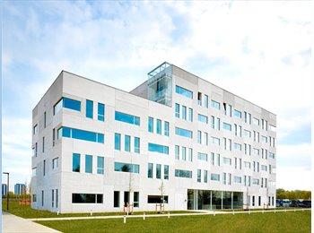 EasyKot EK - Campus  Nieuw - Zuid   -  Kamer type A, Antwerpen-Anvers - € 390 p.m.