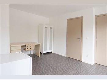 EasyKot EK - moderne ruime studentenstudio centrum Hasselt, Hasselt - € 380 p.m.