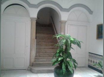 EasyPiso ES - Mágnifica habitación en el centro de Cádiz, Cádiz - 270 € por mes