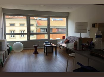 Appartager FR - loue 1 pièce (20 m2) dans F5 de 140 m2 (salon-cuisine 30m2), Nancy - 449 € /Mois