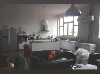 Appartager FR - Chambre dans loft 200m2, La Ricamarie - 320 € /Mois