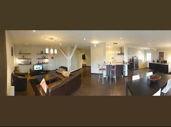 Appartager FR - Grand appart de standing dans maison Montpellier Millénaire, Castelnau-le-Lez - 440 € /Mois