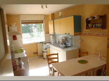 Appartager FR - Colocation à 3 : 2 chambres libres, tout confort, Dijon - 380 € /Mois