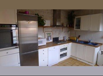 Appartager FR - Chambre dans grand appart duplex avec terrasse !!!, Méry-sur-Oise - 340 € /Mois