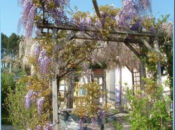 Appartager FR - orgon joli village dans les alpilles chambre, Morières-lès-Avignon - 350 € /Mois