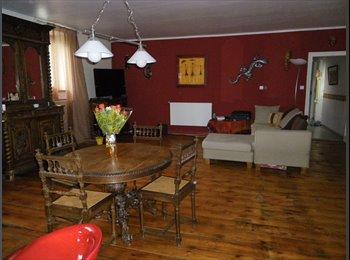 Appartager FR - Grand appartement en colocation entièrement rénové, Nancy - 400 € /Mois