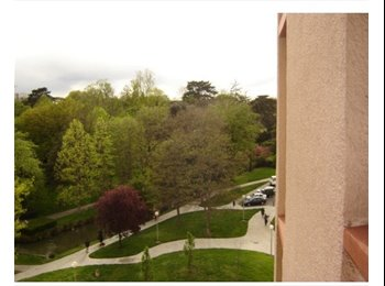 Appartager FR - COLOC TOULOUSE, Tournefeuille - 270 € /Mois