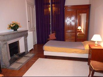Appartager FR - Chambre rénovée chez l'habitant., Grenoble - 380 € /Mois