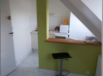 Appartager FR - CHAMBRE INDEPENDANTE HYPER CENTRE, Lorient - 315 € /Mois